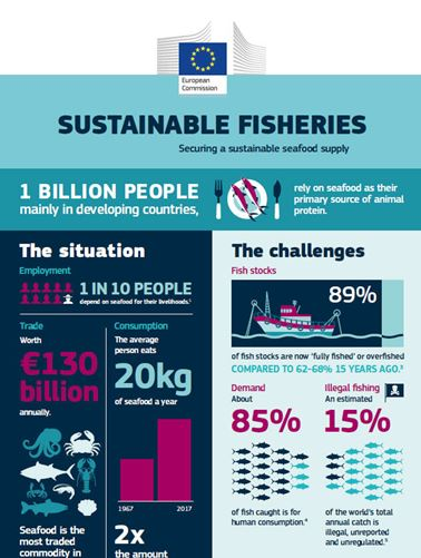 First part of infographic on sustainable fisheries