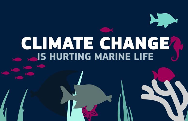 Animation on climate change and its impact on the oceans